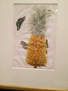 The pineapple, with appropriate insects and butterflies