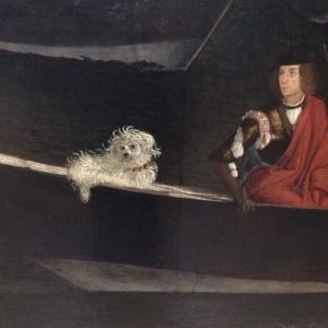 Carpaccio dog