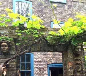 ... and a vine over a brick arch.