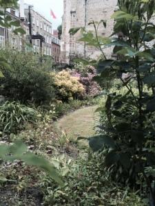 The churchyard garden