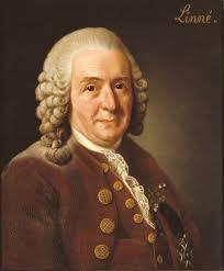Carl Linnaeus (1707–78)