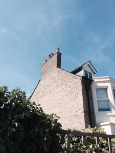 Just round the corner, real chimneys, with added pigeons.