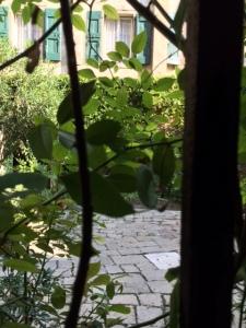 Palazzo Contarini Zaffo: the garden.