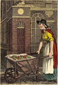 Apples for baking or boiling in the eighteenth century.