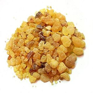 Grains of frankincense resin.