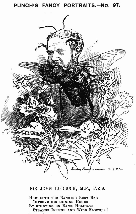 Punch's 1882 caricature of Lubbock as a bee.