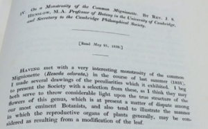Henslow's paper on monstrous mignonettes – usually a tiny and inoffensive plant.