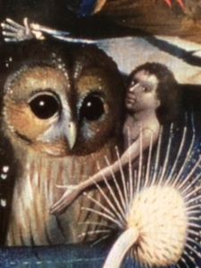 Owls were not a symbol of wisdom but of witchcraft ...
