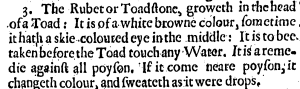 From W.A. Scribonius, Naturall Philosophie ..., trans. Daniel Widdowes, published in London 1631.