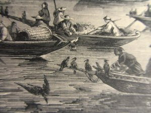 Chinese cormorant fishing, from an 1868 print.