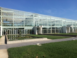 A section of the Biodiversity Garden glasshouses.
