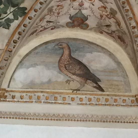 Detail of decoration in Palazzo Grimani.